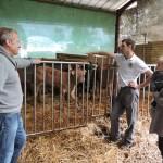 Portes ouvertes à la ferme - Castillon 2